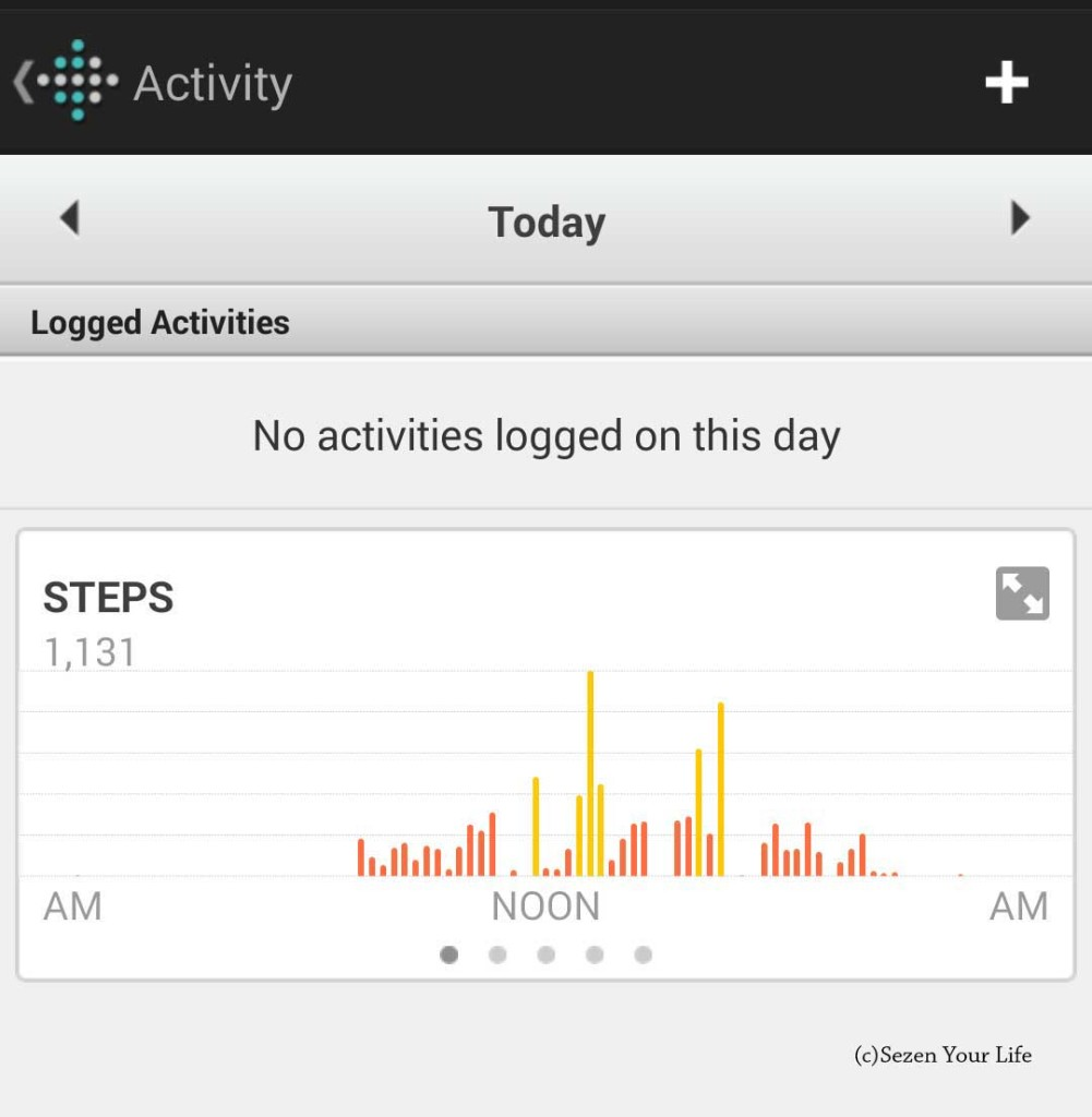 Fitbit Force Move Summary