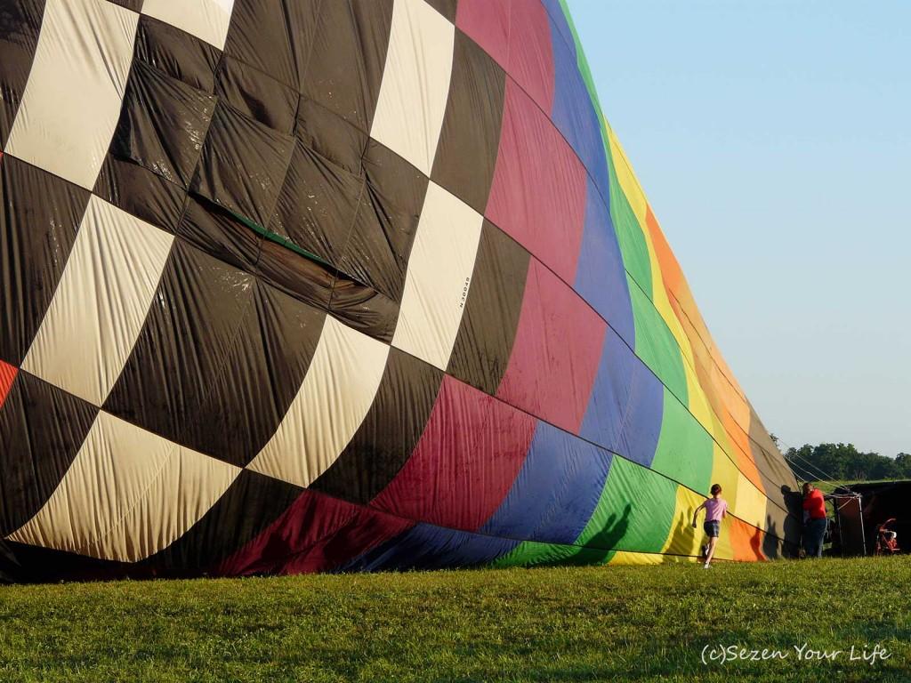 BalloonClassic8108bySarahFranzen