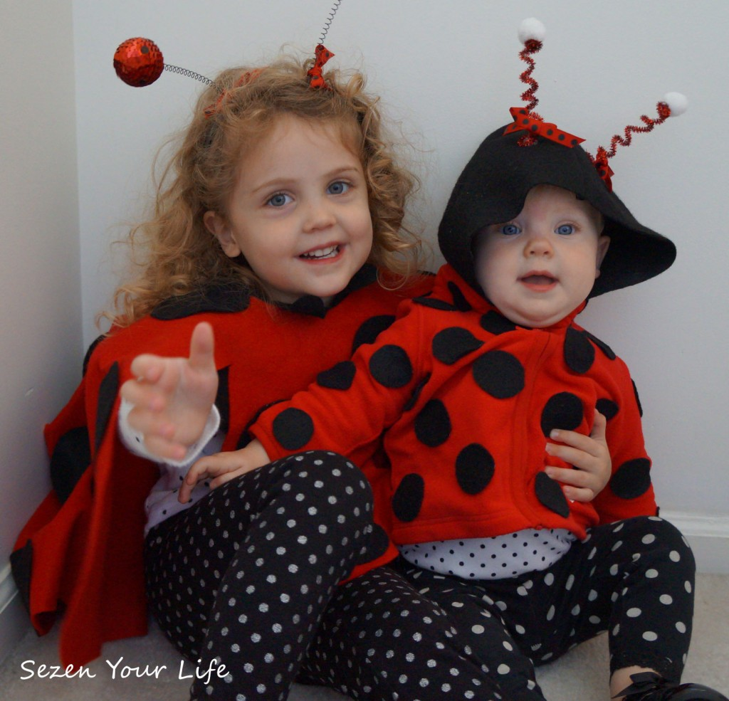 L-and-C-ladybugs